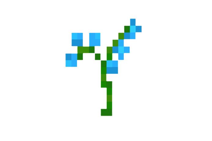 Minecraft 公益服务器宣言